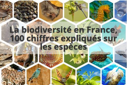 La biodiversité en France - 100 chiffres expliqués sur les espèces