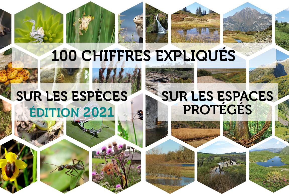 La biodiversité en France - 100 chiffres expliqués sur les espèces (2021) et sur les espaces protégés (2019)