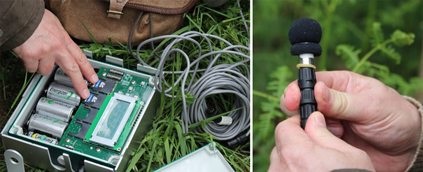 Example of protocol: installation of an ultrasound recording device for a study on bats. � Camille Gazay