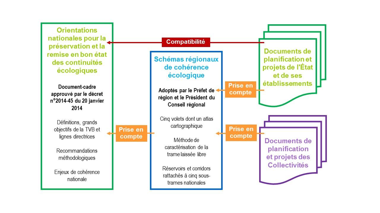 Figure 3 : Les différents échelons territoriaux de mise en œuvre de la TVB et leur lien d'opposabilité (© UMS PatriNat)