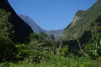 Parc National de la Réunion  © INPN - P.Gourdain