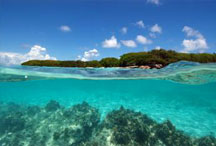 Les Antilles © INPN - Franck Mazeas