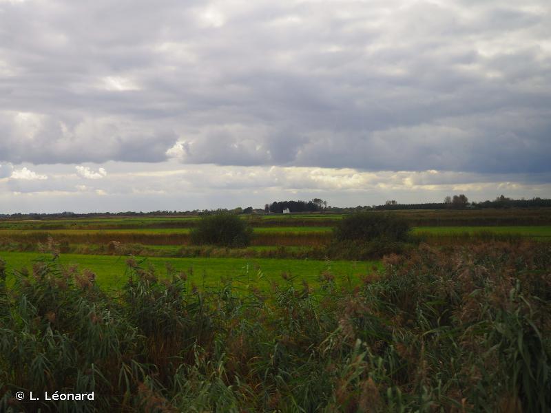Domaine de Beauguillot
