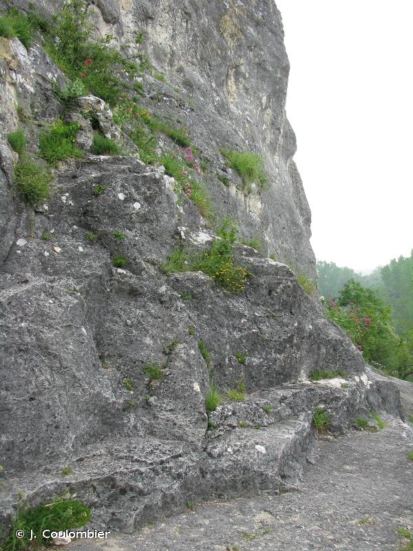 Les Chaumes Boissières et côteaux de Châteauneuf-sur-Charente