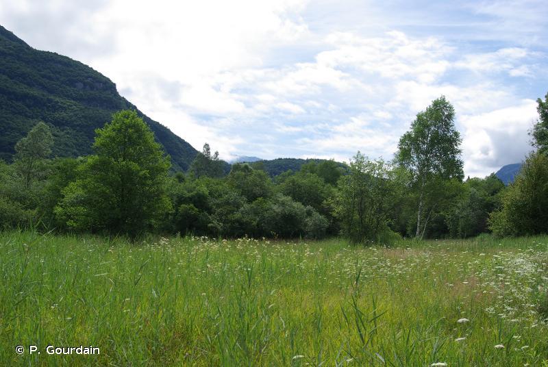Bout Du Lac D'Annecy