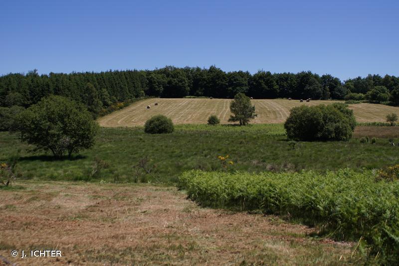 Millevaches En Limousin