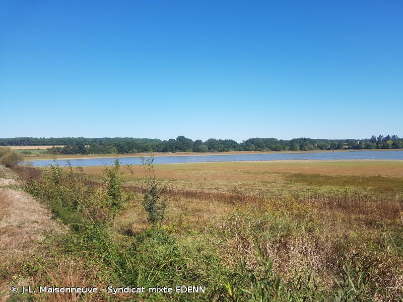 Forêt, étang de Vioreau et étang de la Provostière