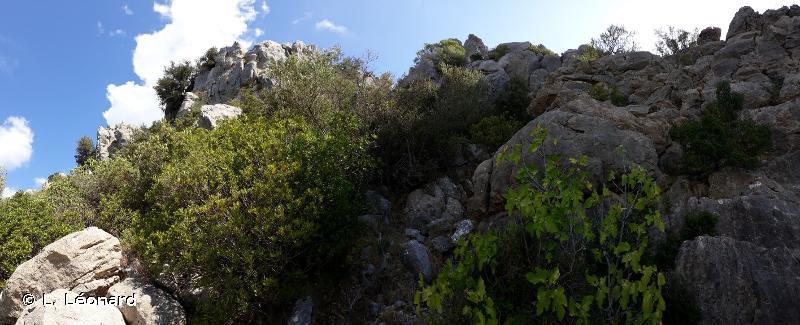 Punta Calcina