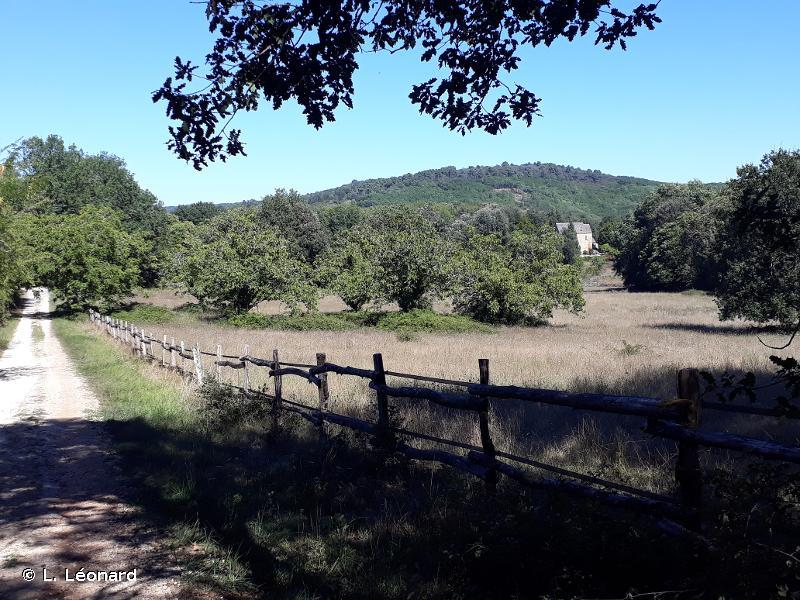 Coteaux calcaires de la vallée de la Vézère