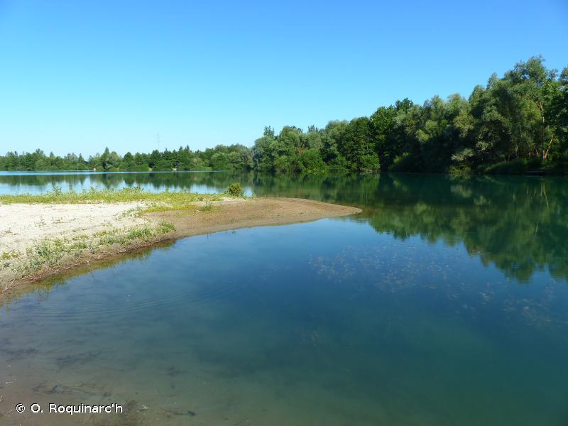 C1.1 - Lacs, étangs et mares oligotrophes permanents - EUNIS