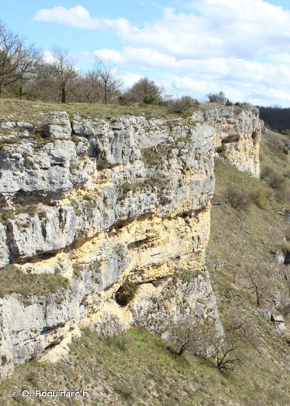 H - Habitats continentaux sans végétation ou à végétation clairsemée - EUNIS