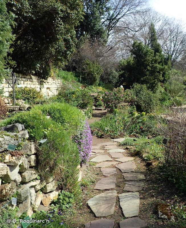 I2 - Zones cultivées des jardins et des parcs - EUNIS