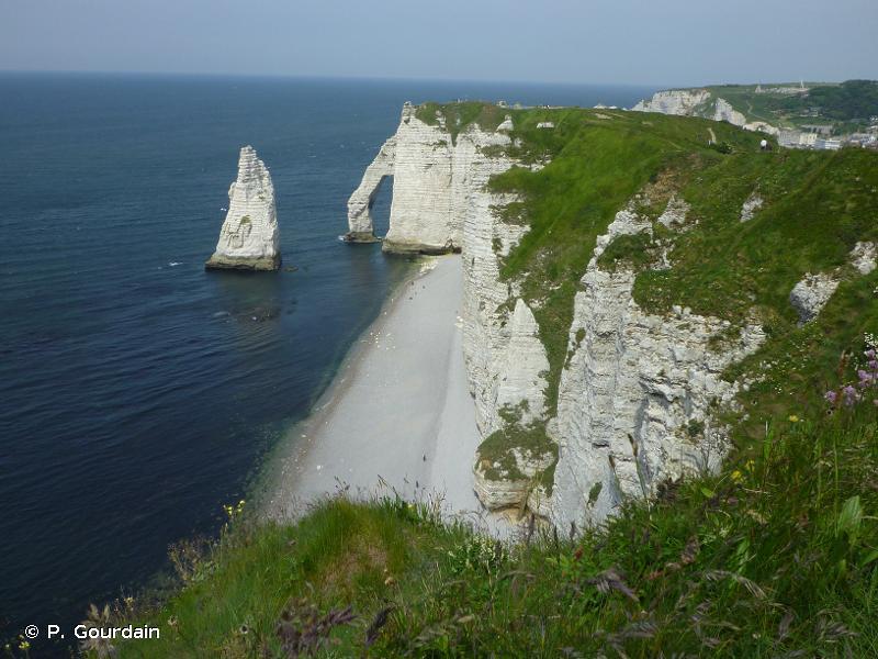 B3.3 - Falaises, corniches et rivages rocheux à Angiospermes - EUNIS