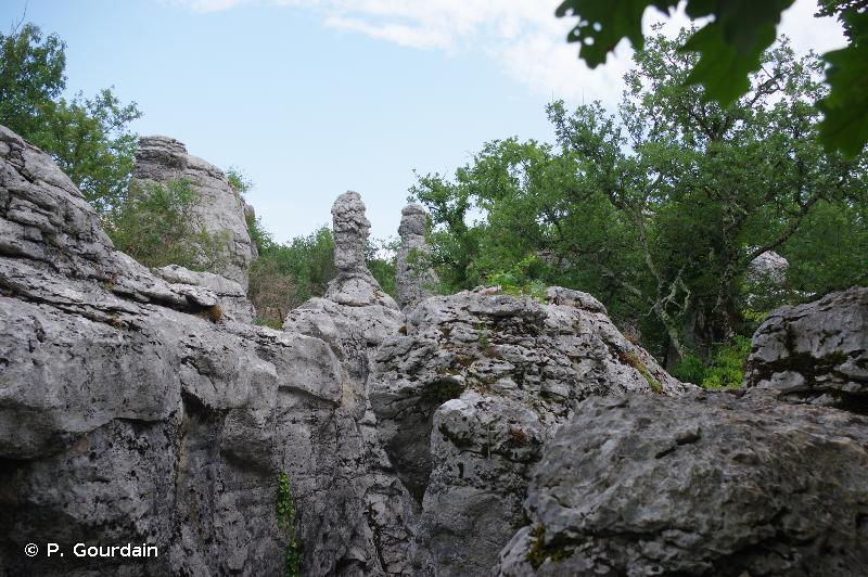 Bois de Païolive et Basse Vallée du Chassezac
