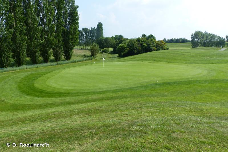 E2.6 - Prairies améliorées, réensemencées et fortement fertilisées, y compris les terrains de sport et les pelouses ornementales - EUNIS