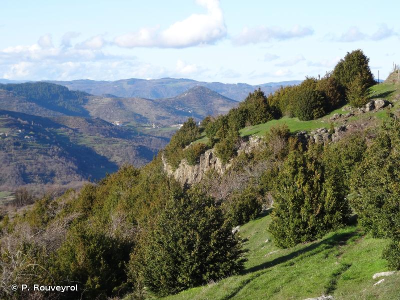 Monts D'Ardèche