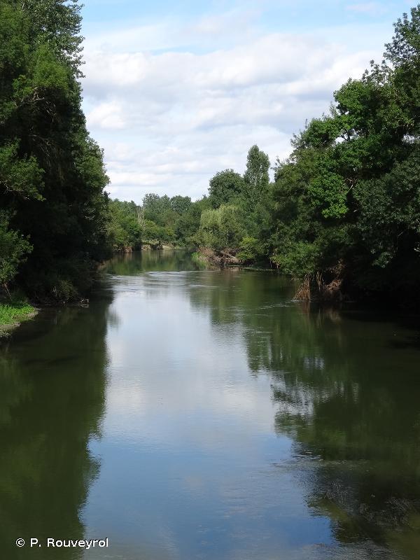 La Loire de Candes Saint Martin à Mosnes