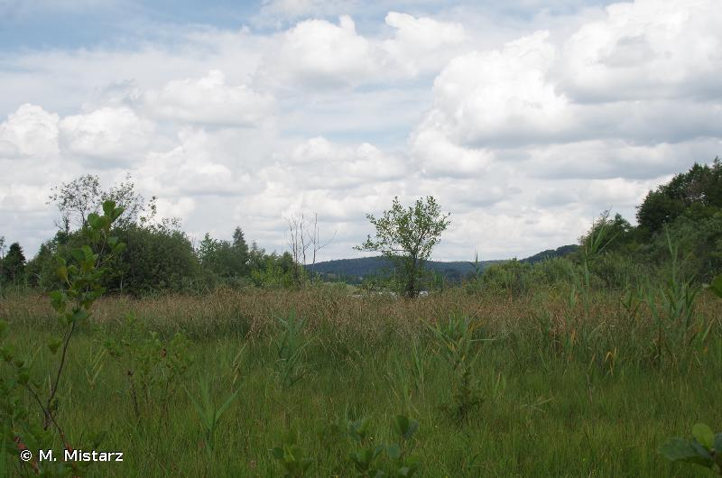 Complexe des Sept Lacs du Jura