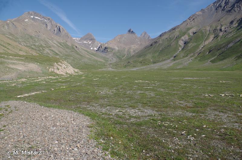 Plateau d'Emparis - Goleon