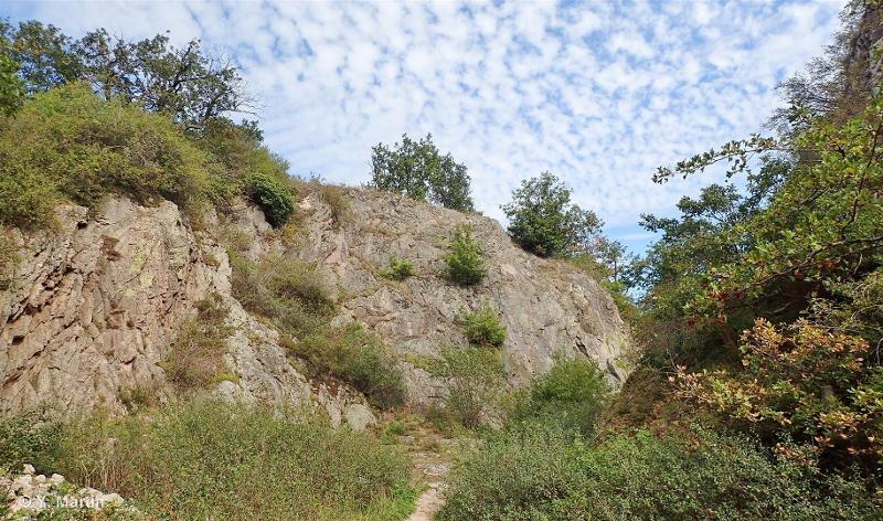 Massif de l'Ortenbourg à Scherwiller et crête du Falkenstein à Dambach-la-Ville