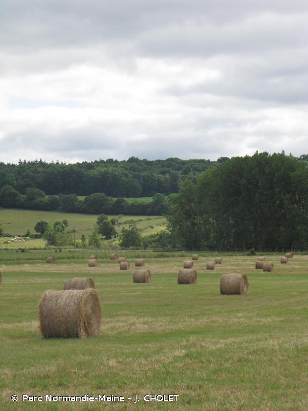 Haute Vallée de la Sarthe