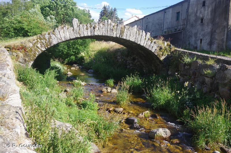 Haut-bassin de l'Allier