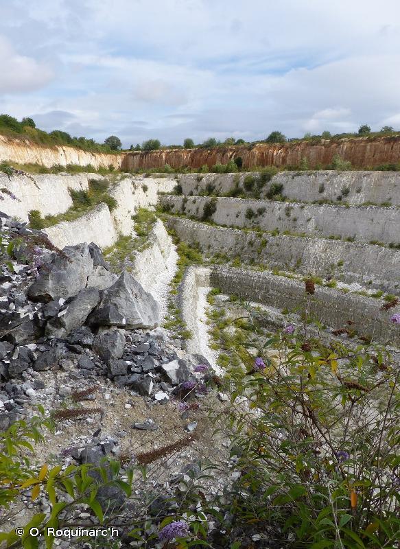 J3.2 - Sites d'extraction minière à ciel ouvert en activité, y compris les carrières - EUNIS