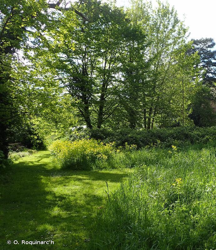 85.1 - Grands parcs - CORINE biotopes