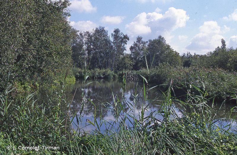 Marais De Fontenay-Le-Vicomte