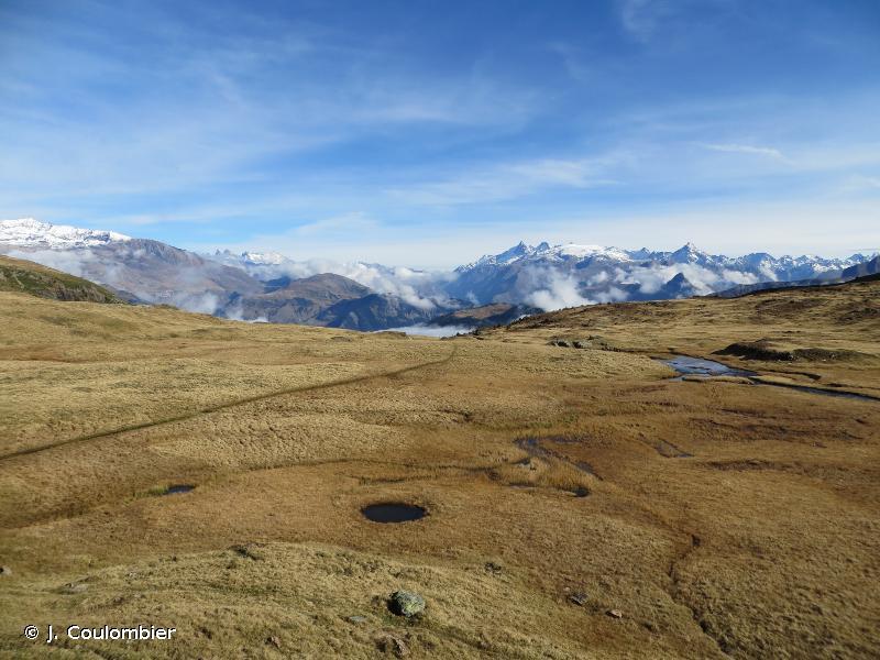 Landes, tourbières et habitats rocheux du Massif du Taillefer