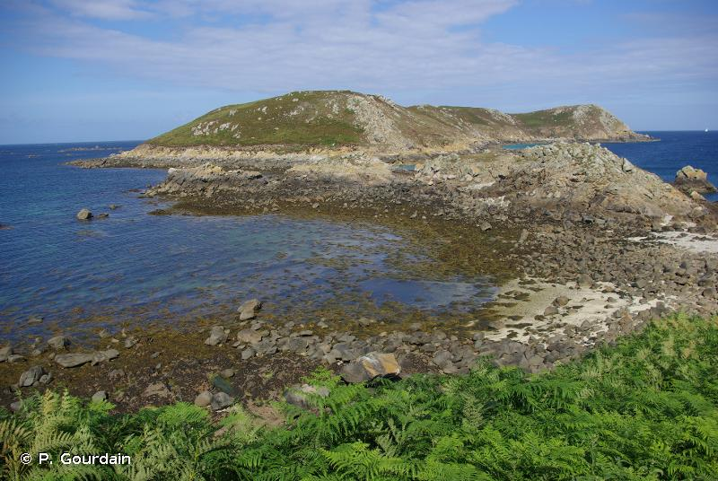 Côte de Granit rose-Sept-Iles