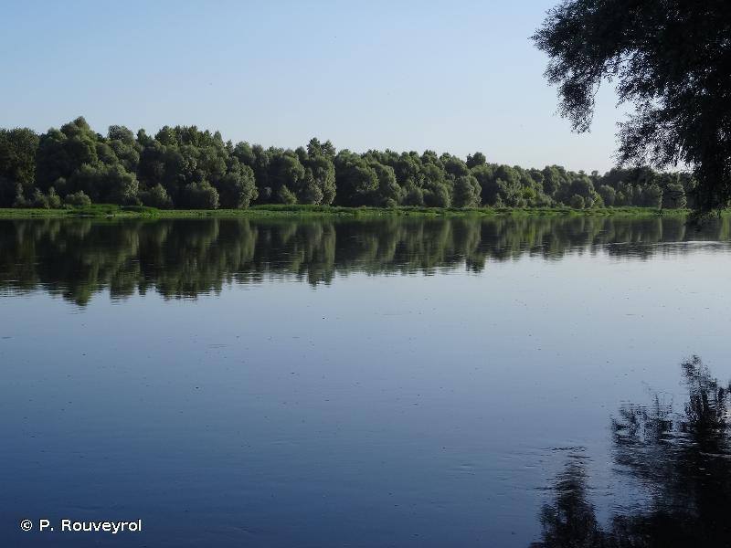 Vallée de la Loire de Mosnes à Tavers