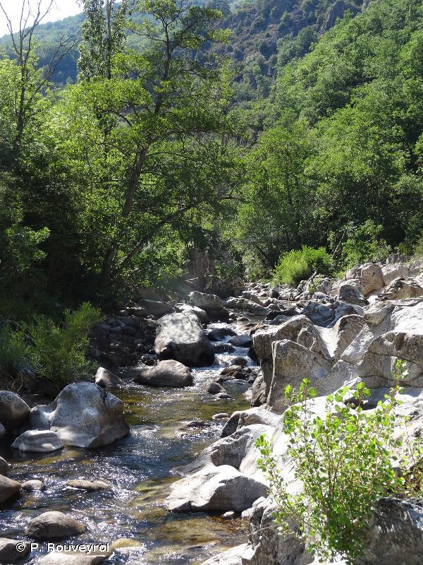 Vallée de l'Eyrieux et ses affluents