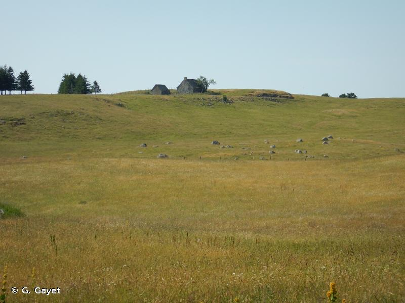 Versant occidental des Monts d'Aubrac