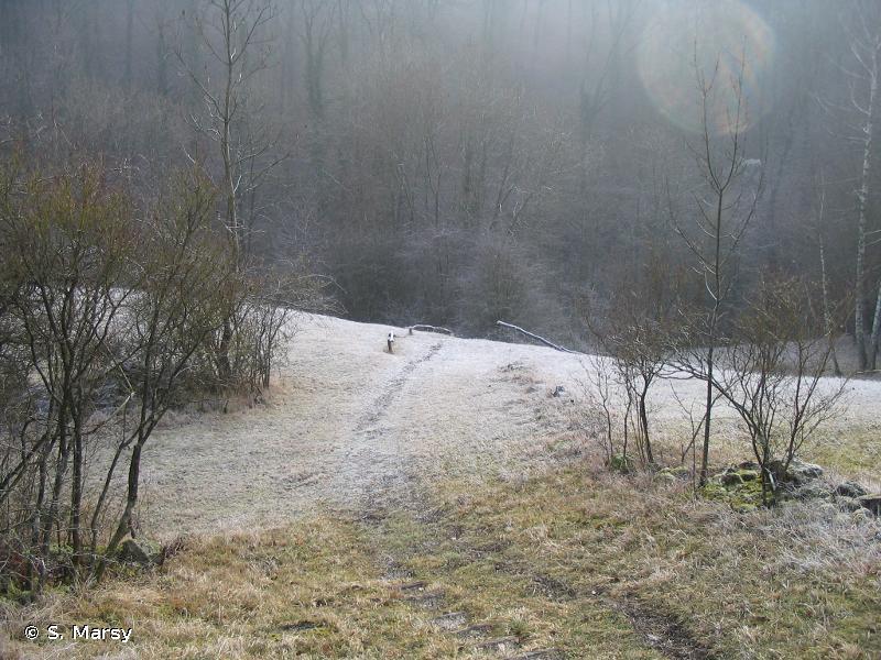 Pelouses et rochers du pays de Sierck
