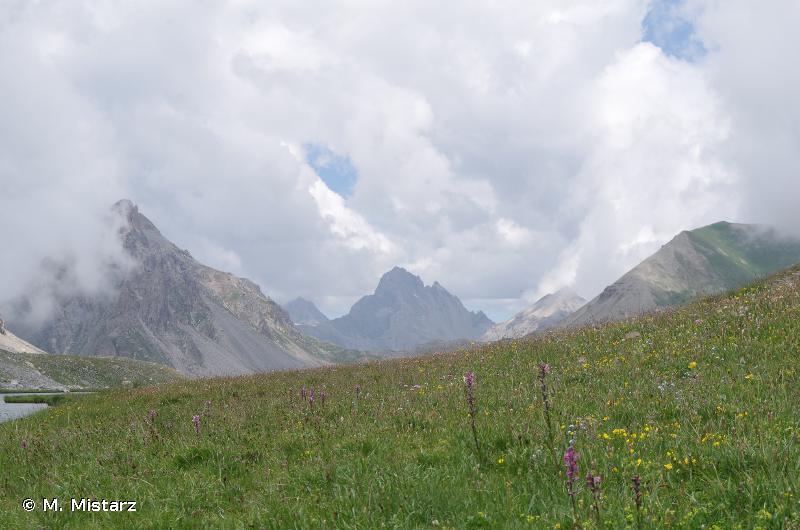 La Tour des Sagnes - Vallon des Terres Pleines - Orrenaye