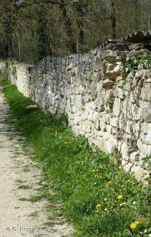J1.31 - Murs des vieilles villes - EUNIS