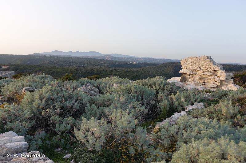 Plateau de Pertusato/ Bonifacio et îles Lavezzi
