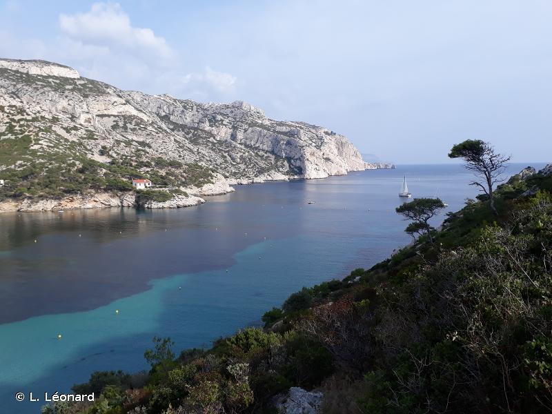Iles Marseillaises - Cassidaigne