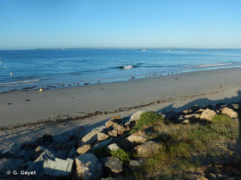 PARC OCEANIQUE DE KERGUELEN