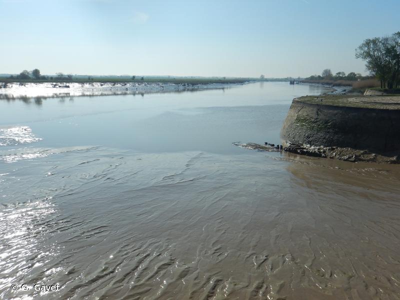 Estuaire et basse vallée de la Charente
