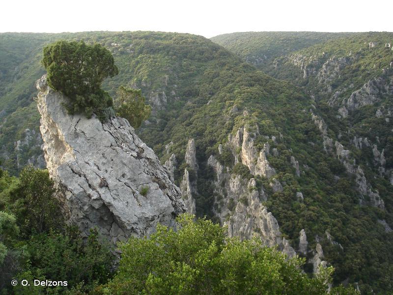Falaises et pieds de falaises de la bordure méridionale des hauts plateaux du Vercors