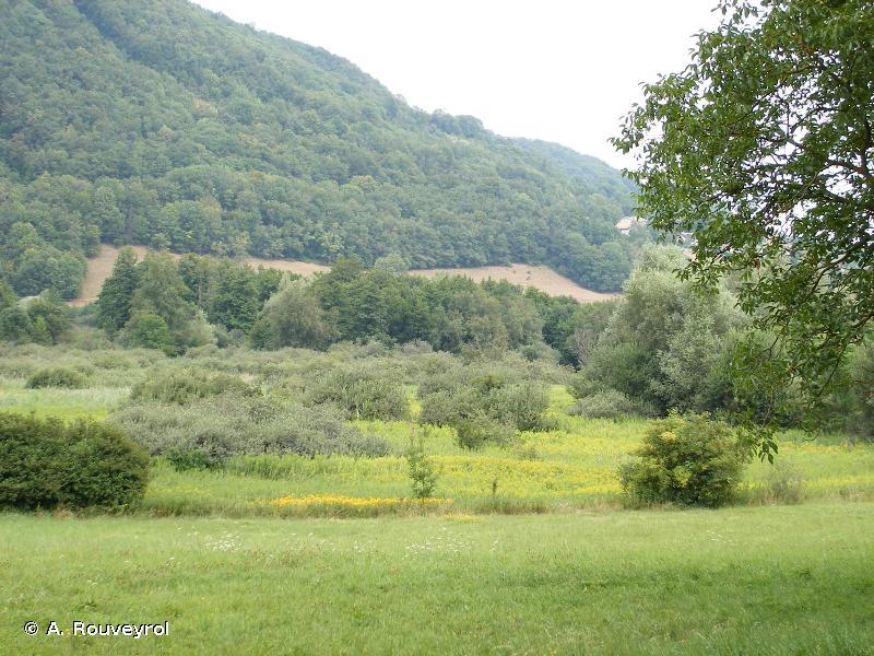 Marais du Val d'Ainan