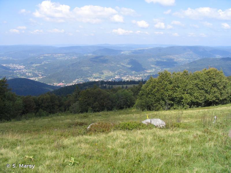 Forêts, landes et marais des Ballons d'Alsace et de Servance