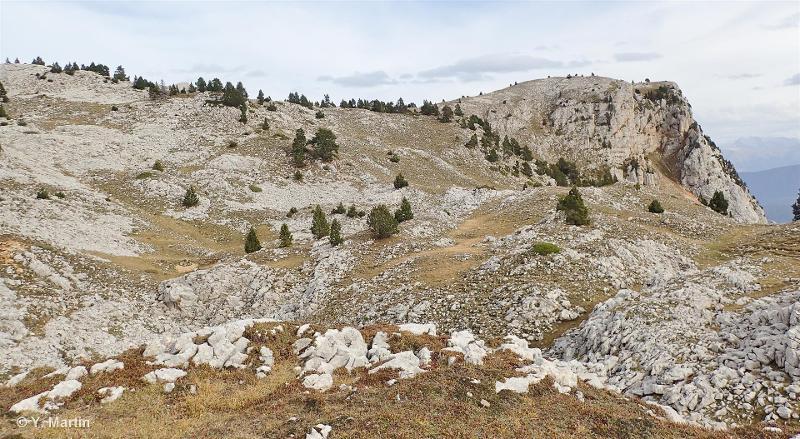 Hauts plateaux et contreforts du Vercors oriental