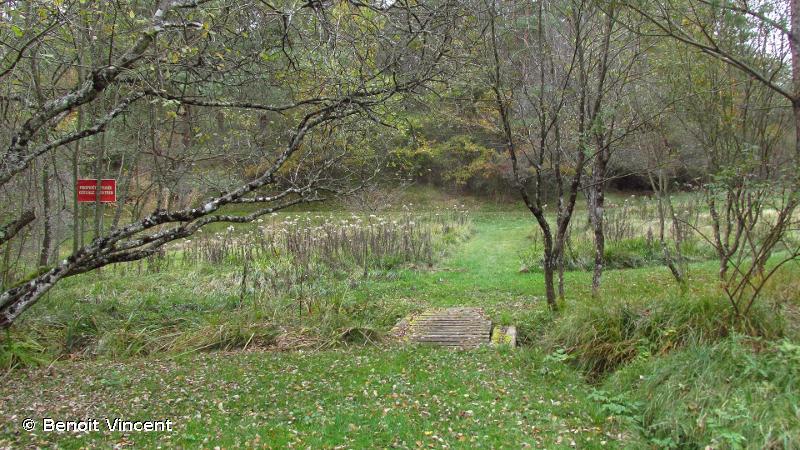 Pelouse des sources de la Suize a Courcelles-en-Montagne