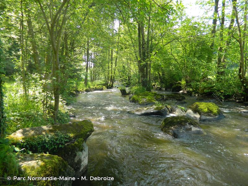 Vallée du Sarthon et affluents
