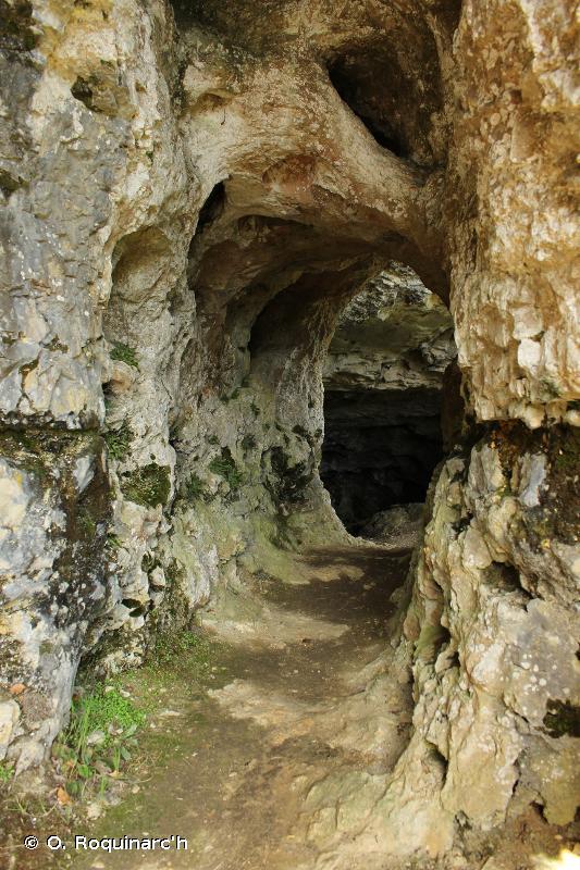 H1 - Grottes, systèmes de grottes, passages et plans d'eau souterrains terrestres - EUNIS