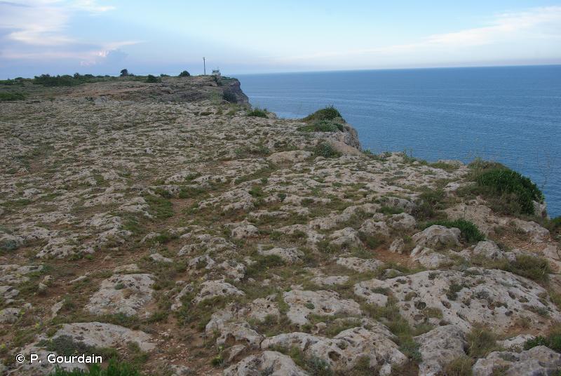 H3 - Falaises continentales, pavements rocheux et affleurements rocheux - EUNIS