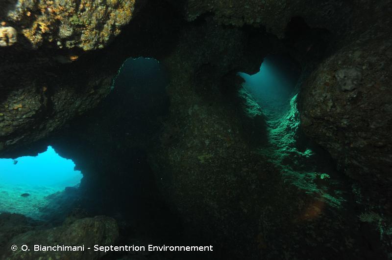 8330 - Grottes marines submergées ou semi-submergées - Habitats d'intérêt communautaire